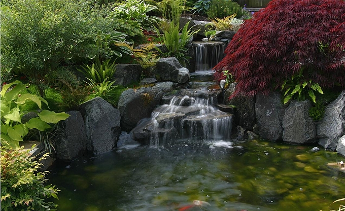 Waterfall & pond area.
