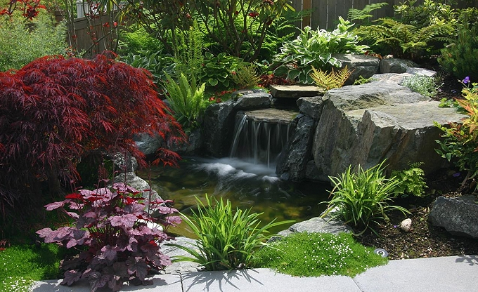 This is an example of a small recirculating pond and waterfall area.