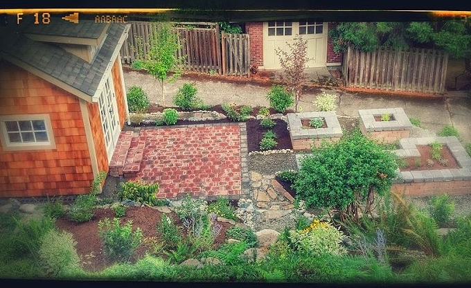 Madrona project after.