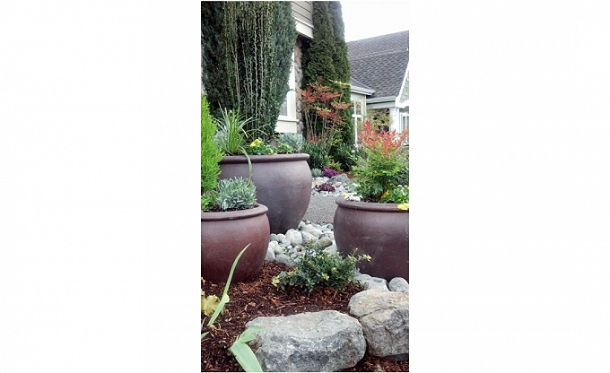 Pots in Sammamish front entry.