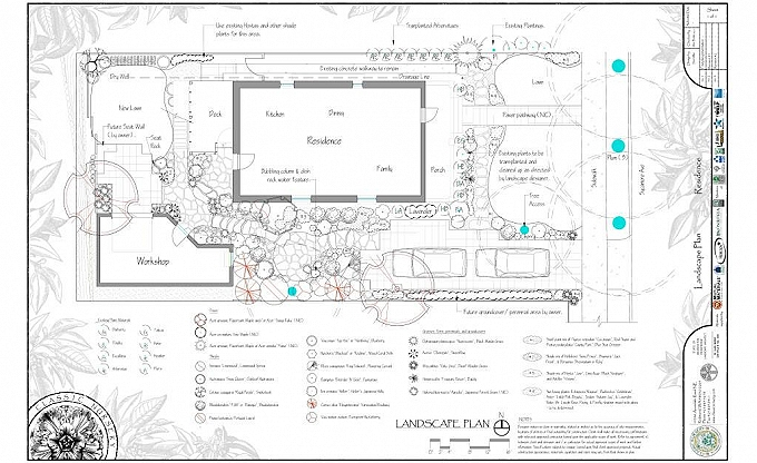 A Landscape plan for a project in Phinney Ridge